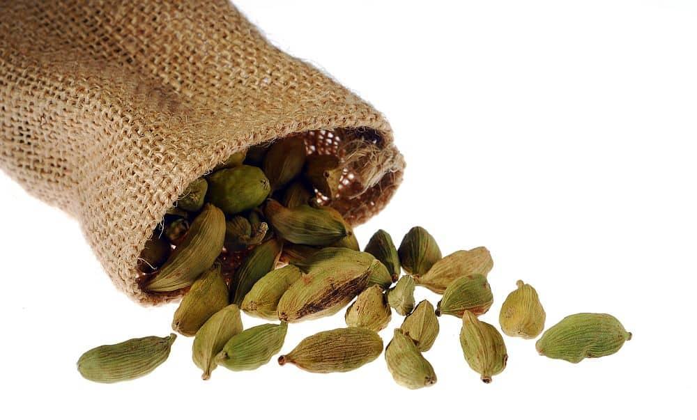 cardamon  Condimentele - ghid de utilizare cardamon