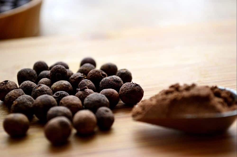 Foto: theardentepicure.com  Condimentele - ghid de utilizare ienibahar