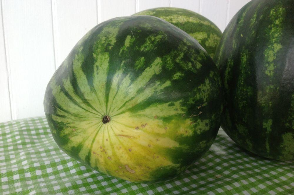 cum alegi pepenele verde