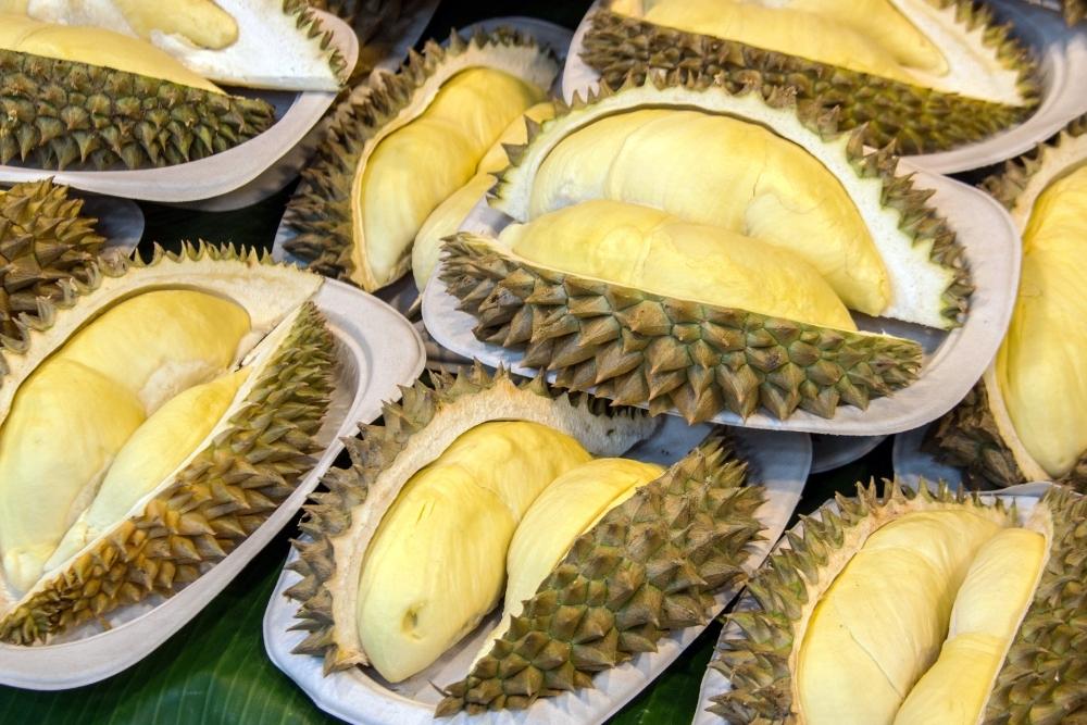 durian felii