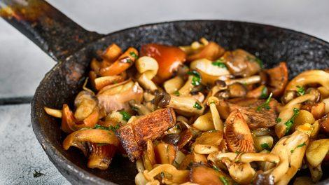 tipuri de ciuperci
