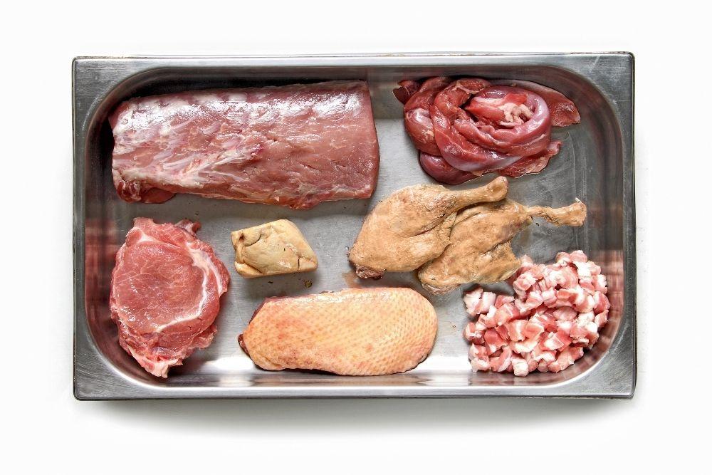 terina carne